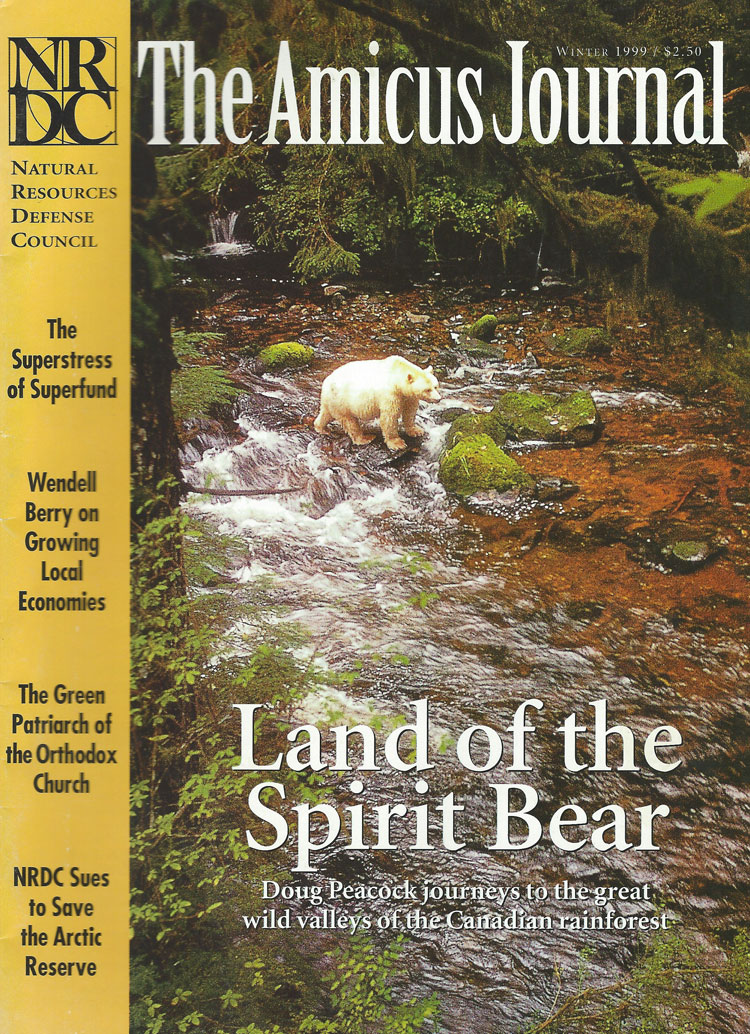 Land of the Spirit Bear, Amicus Journal, Winter 1999